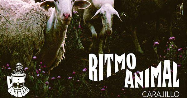 critica-de-carajillo:-ritmo-animal